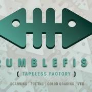 Mediastars riconosce e premia la creatività di Rumblefish VFX